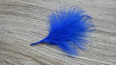Suroviny - Morčacie pierka modré, 24 ks - 10636891_