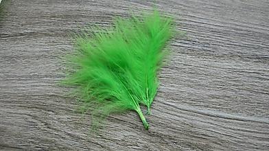 Suroviny - Morčacie pierka zelené, 24 ks - 10636952_