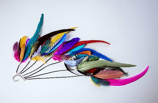 Pestrofarebná záušnica s perím
