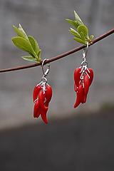 Náušnice - Náušnice - Red Hot Chilli - 10649633_