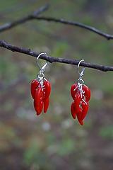 Náušnice - Náušnice - Red Hot Chilli - 10649636_