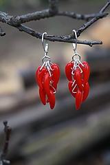 Náušnice - Náušnice - Red Hot Chilli - 10649637_