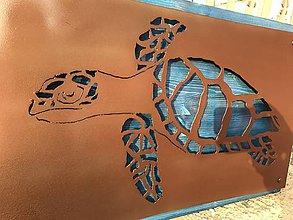 Obrazy - Hawksbill Turtle - 10650211_