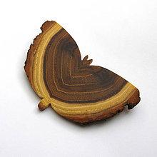 Odznaky/Brošne - Drevená brošňa - motýľ agátový - 10650897_