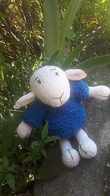 Hračky - Pletená ovca - Dorota Domáca v modrom svetri - 10654672_