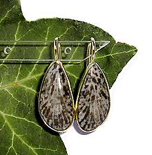 Náušnice - ZLATÉ náušnice fosilní BRYOZAN 21*10 - 10656120_