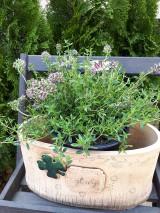 Nádoby - Keramické kvetináče na bylinky. - 10664128_