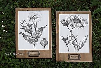 Tabuľky - Drevené tabuľky Kvety - 10679119_