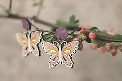 Náušnice - Motýľovce - 10691045_