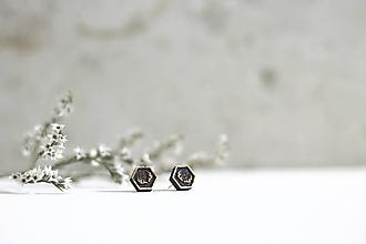 Náušnice - Mini príroda (Hexagon Parôžky tmavé) - 10691688_