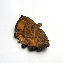 Odznaky/Brošne - Drevená brošňa - motýlik dubový - 10692745_