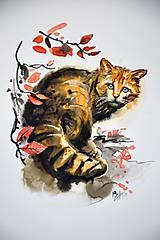 Obrazy - Felis Silvestris - 10710579_