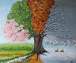 Obrazy - Strom - 4 ročné obdobia - 10709778_