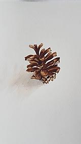 Obrazy - Maľba: Šiška  a Zjedená - 10712228_