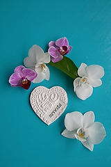 Magnetky - Srdce V. menovka - 10715840_