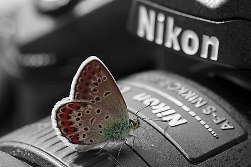 Som Nikon...
