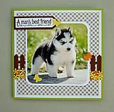 Papiernictvo - Pohľadnica - šteniatko - Sibírsky husky - 10722847_