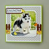 Papiernictvo - Pohľadnica - šteniatko - Sibírsky husky - 10722856_