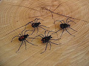 Magnetky - Čierna vdova - 10725302_