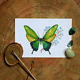 Obrazy - Zelený Motýľ - 10726018_