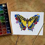 Obrazy - Motýľ - Vydlochôst - 10726079_