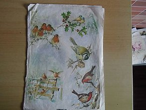 Papier - vtáčiky - 10731912_
