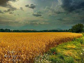 Obrazy - LIPTOV fotoplátno 60x40cm - 10735071_
