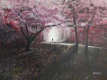 Obrazy - Samuraj - 10737039_