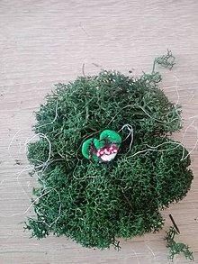 Odznaky/Brošne - Brošnička-V lese - 10734554_