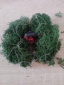 Odznaky/Brošne - Brošnička:Červená a čierne. - 10734559_