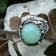 Prstene - Jarní les - 10737872_
