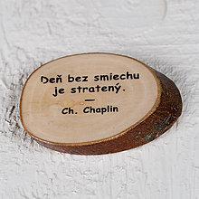Magnetky - Magnetka - citát - Ďen bez smiechu... - 10739919_