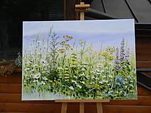 Obrazy - Lúčne trávy - 10747234_
