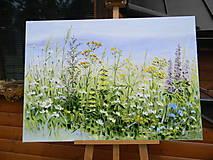 Obrazy - Lúčne trávy - 10747238_