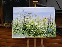 Obrazy - Lúčne trávy - 10747242_