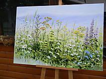 Obrazy - Lúčne trávy - 10747246_