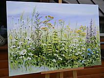 Obrazy - Lúčne trávy - 10747247_