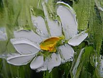 Obrazy - Lúčne trávy - 10747259_