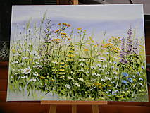 Obrazy - Lúčne trávy - 10750752_
