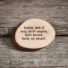 Magnetky - Magnetka - citát - Každý deň... - 10748768_