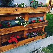 Nábytok - Nástenná záhradka
