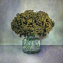 Obrazy - MLIEČNIK fotoplátno 60x60 cm (E) - 10752335_