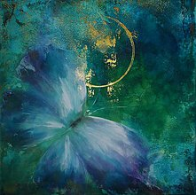Obrazy - noční motýl - 10753016_