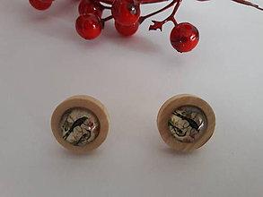 Náušnice - Náušničky s vtáčikmi (Vtáčik 2) - 10751996_