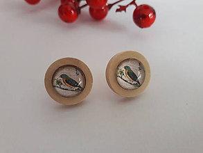 Náušnice - Náušničky s vtáčikmi (Vtáčik 1) - 10752000_