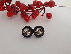 Náušnice - Náušničky s vtáčikmi (Vtáčik 3) - 10752819_