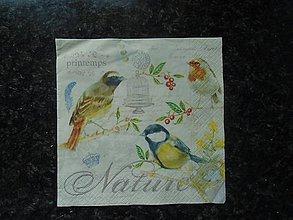Papier - vtáčiky - 10753610_
