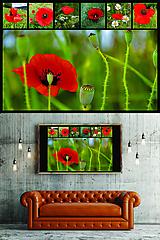 Grafika - POSTER/PLAGÁT/FOTO A3 (maky) - 10757217_