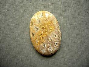 Minerály - Kabošon - fosilní korál 37 mm, č.64f - 10762690_