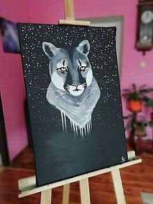 Obrazy - My cynical cosmos - 10765621_